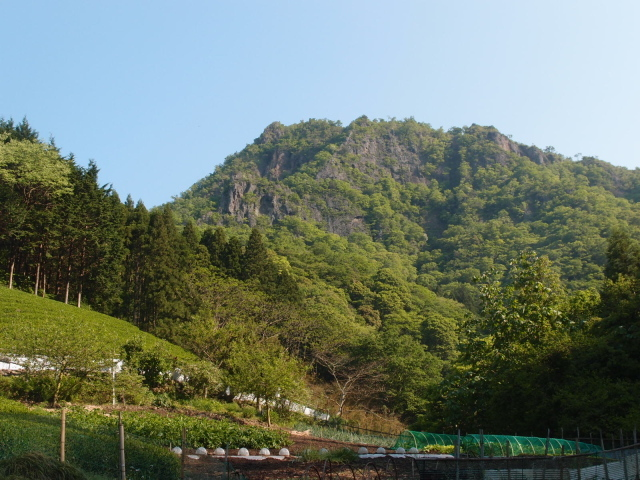 1.0大円地から男体山.JPG