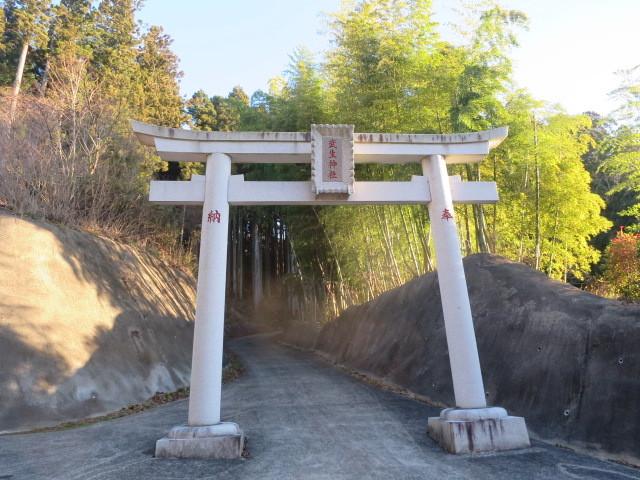 1.0武生神社.JPG