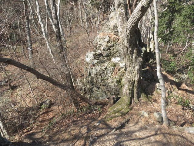 1.3大岩.JPG
