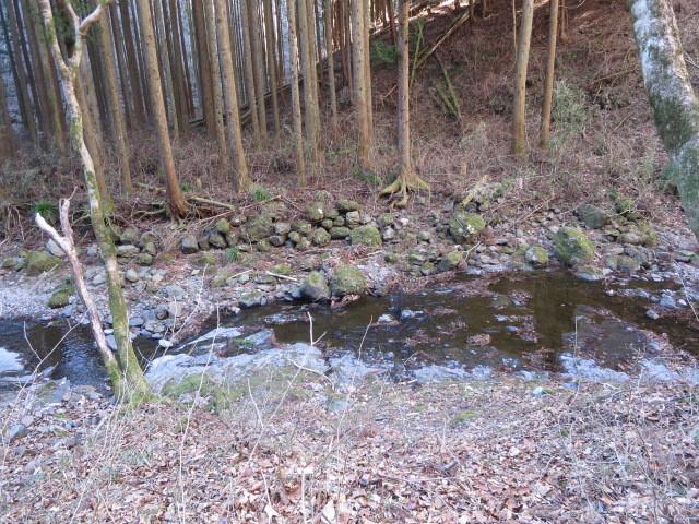 2.0竜神川に下りる.JPG