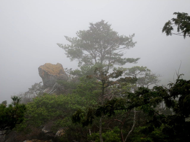 2.4松島.JPG