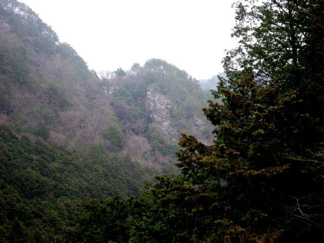 4.4カモシカ岩.JPG