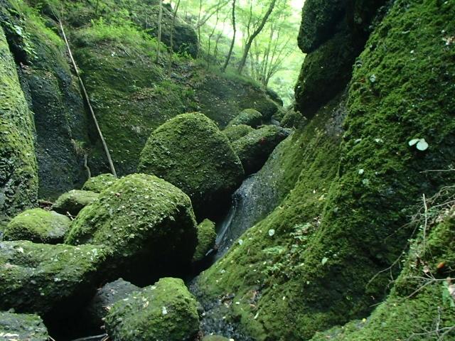 1.6大岩の迷路.JPG