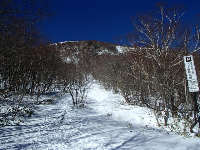 2.9地蔵岳へ.JPG
