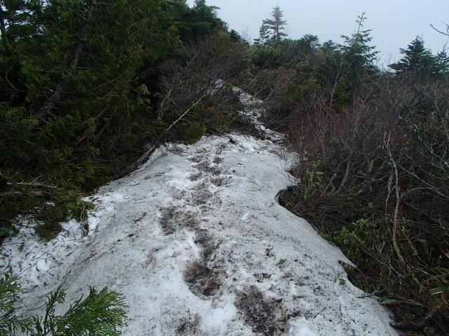 3.0残雪.JPG