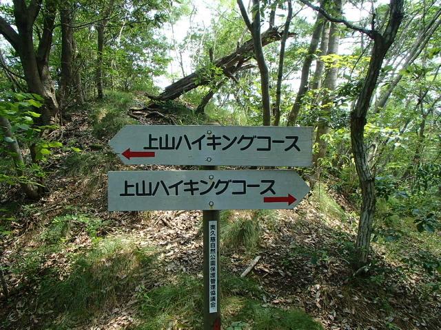 3.3上山ハイキングコース.JPG